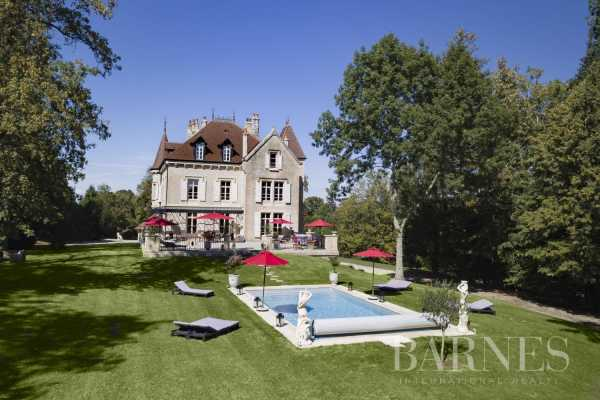 Château Villers-Farlay  -  ref 4292963 (picture 2)