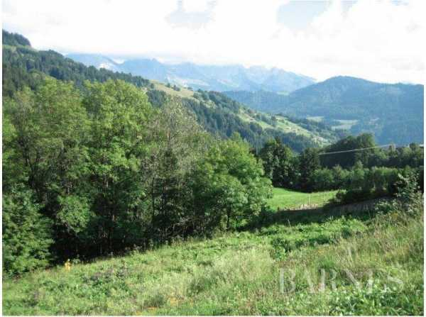Chalet Le Grand-Bornand - Ref 2666418