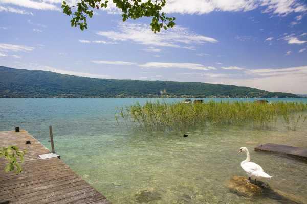 Maison, Veyrier-du-Lac - Ref 2666741