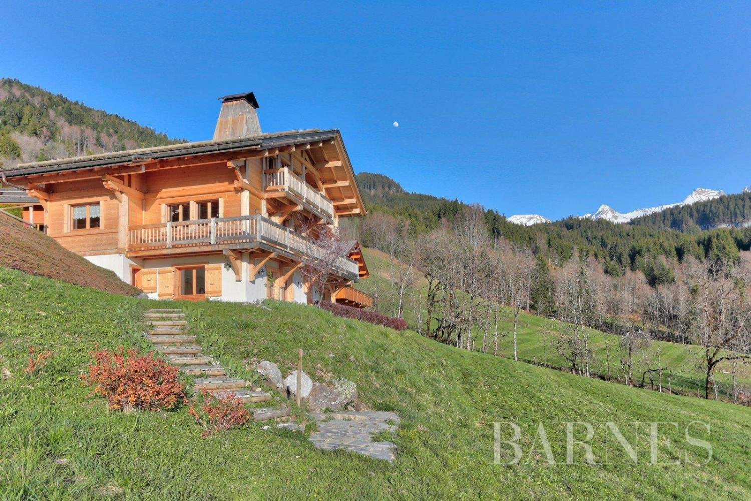 Magnificent high-end chalet in St Jean de Sixt picture 9
