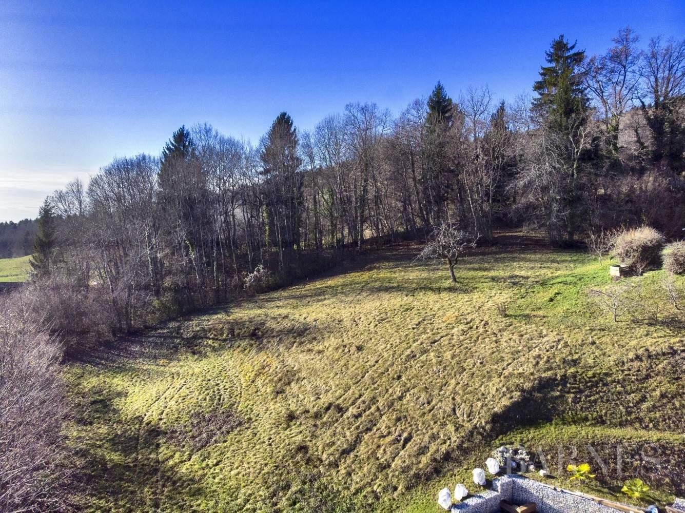 TERRAIN CONSTRUCTIBLE - HAUTEURS DE  PRINGY picture 1