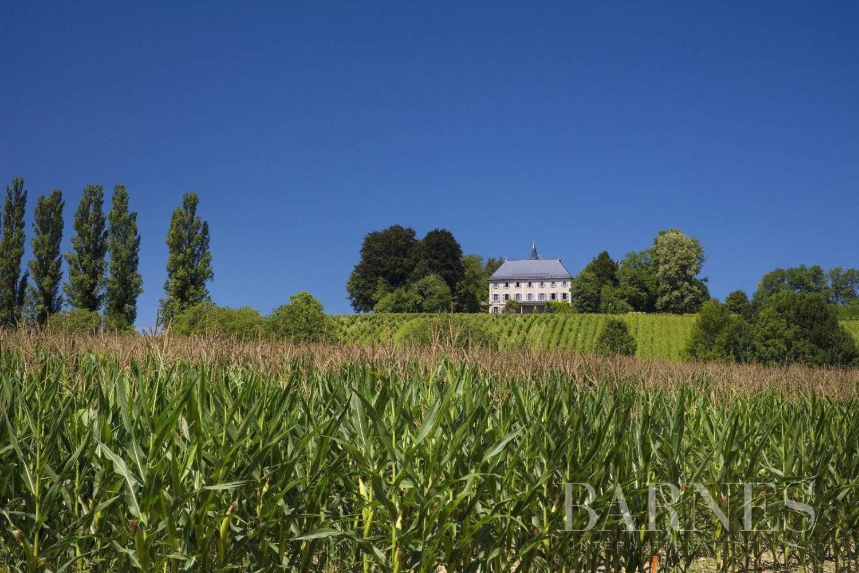 Chambéry  - Château 10 Pièces 8 Chambres - picture 1