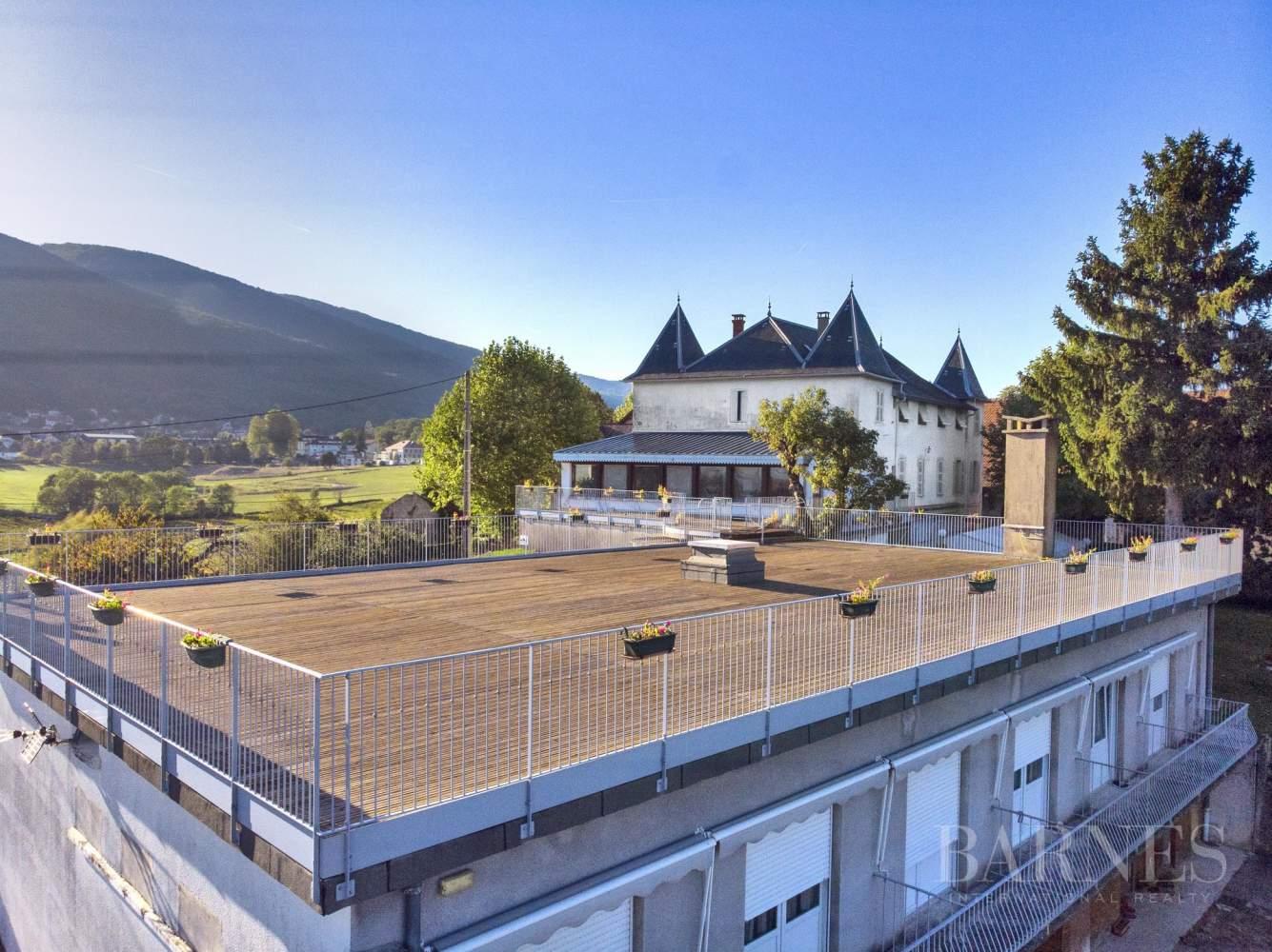 Hotel Chateau entre Chautagne et le Lac de Bourget picture 9