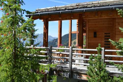 Chalet Verbier  -  ref 1659235 (picture 3)