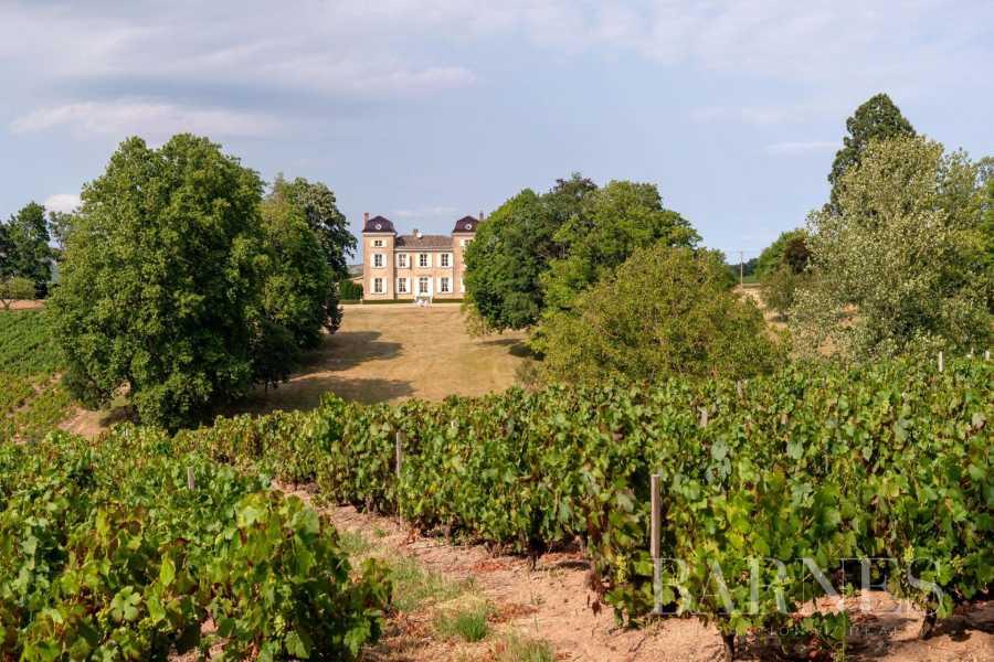 Fleurie  - Château 11 Pièces 7 Chambres