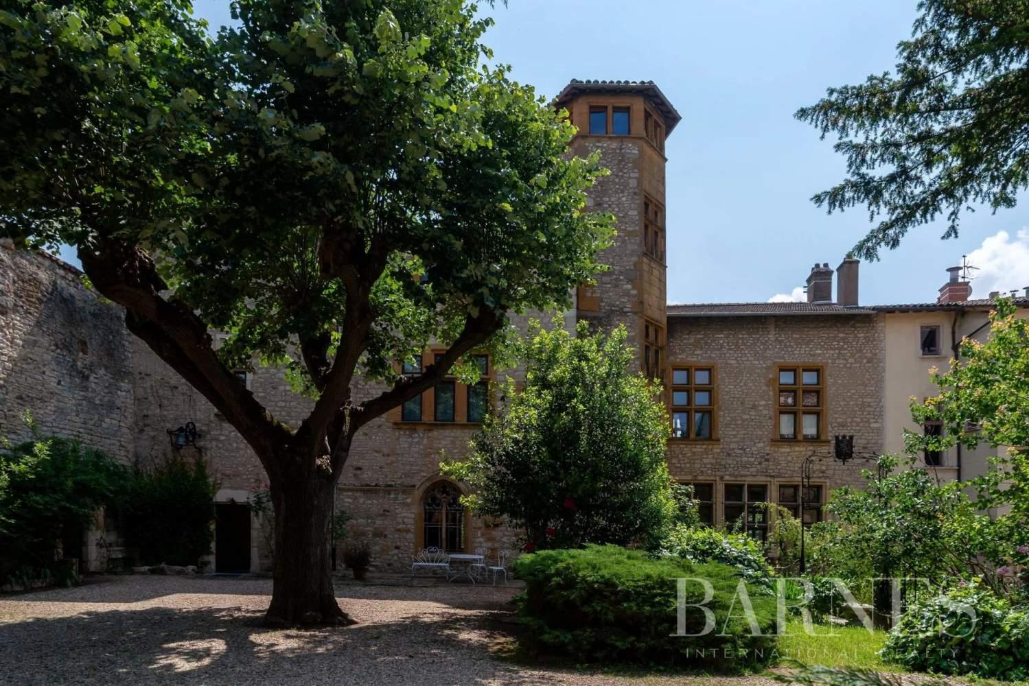 Chazay-d'Azergues  - Château 10 Pièces 4 Chambres - picture 1