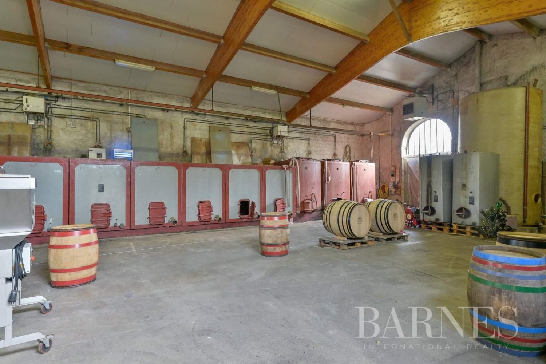Fleurie  - Propriété viticole 11 Pièces 7 Chambres - picture 6
