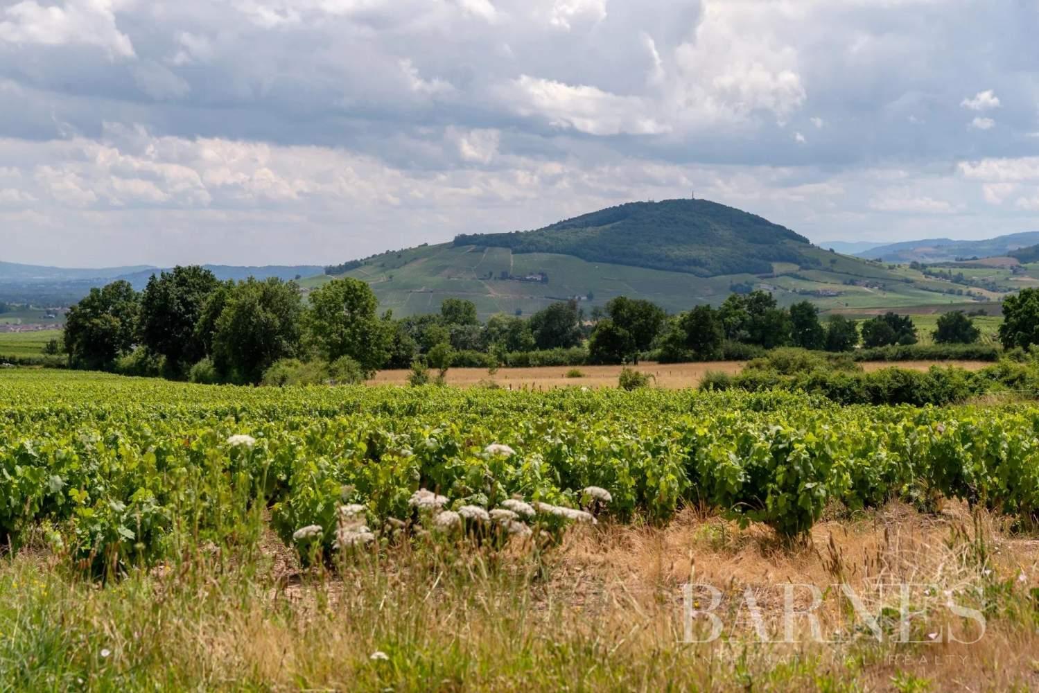 Villié-Morgon  - Maison de village 6 Pièces - picture 3