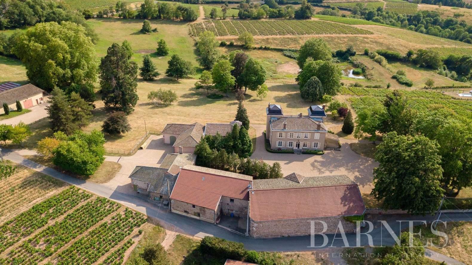 Fleurie  - Château 11 Pièces 7 Chambres - picture 18