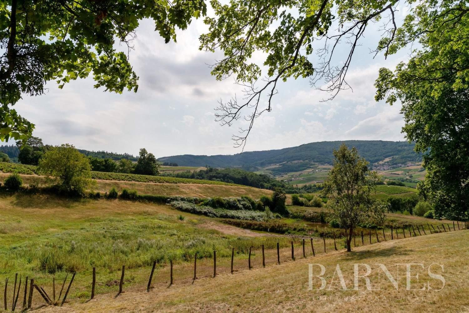 Fleurie  - Propriété viticole 11 Pièces 7 Chambres - picture 17