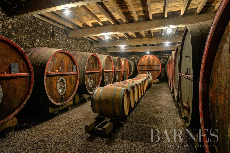 Fleurie  - Propriété viticole 11 Pièces 7 Chambres - picture 5