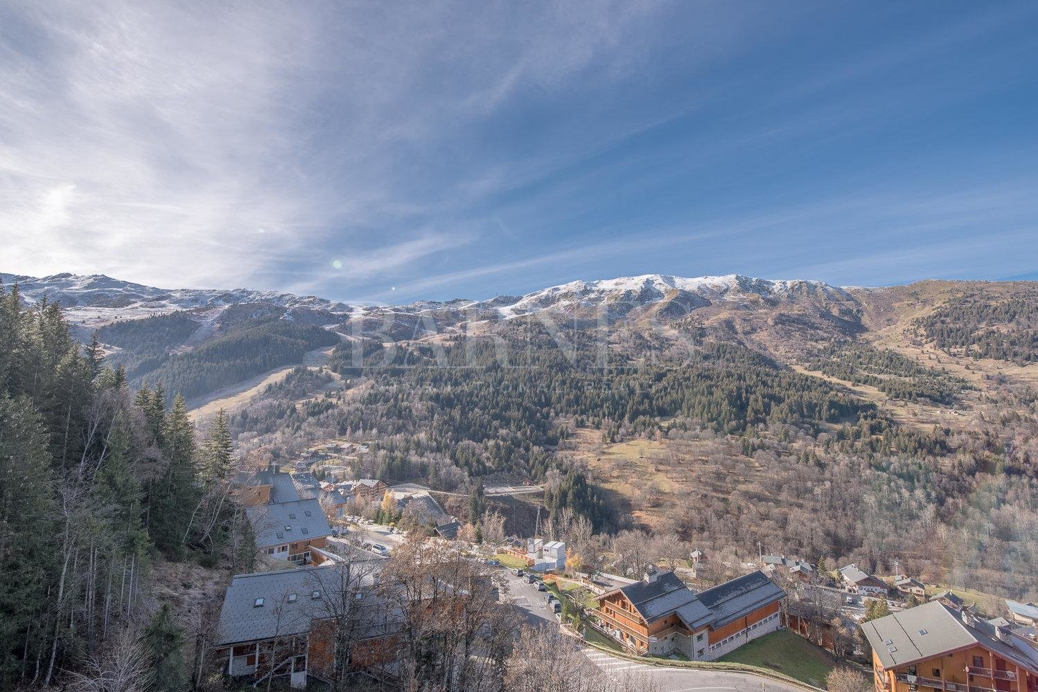 MOREL - Superb apartment close to the center and ski slopes picture 7