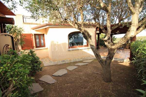Villa Loiri Porto San Paolo  -  ref 3409481 (picture 1)