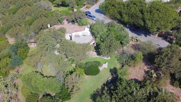 Villa Porto Cervo  -  ref 3176824 (picture 2)