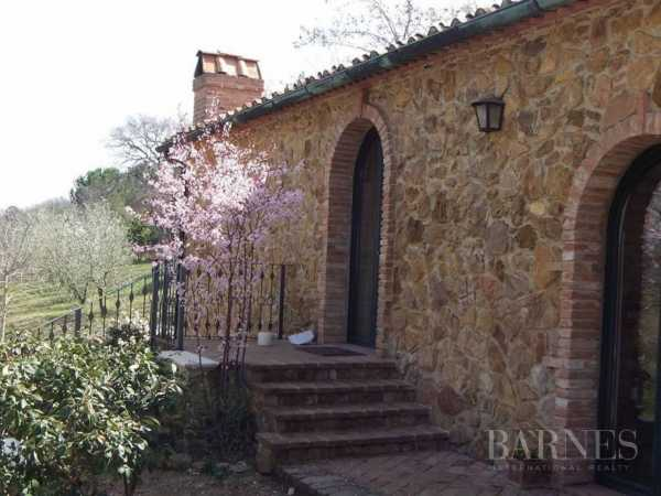 House Suvereto  -  ref 2971666 (picture 2)