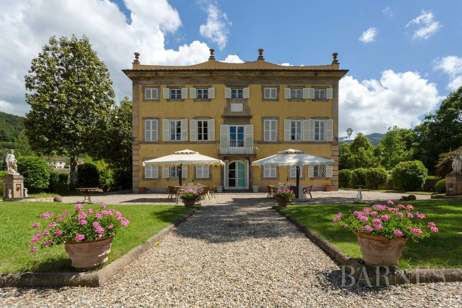 Lucca  - Manor house 19 Bedrooms - picture 2