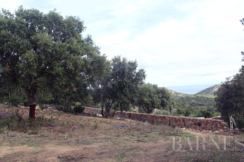 Arzachena  - Terrain constructible 5 Pièces - picture 4