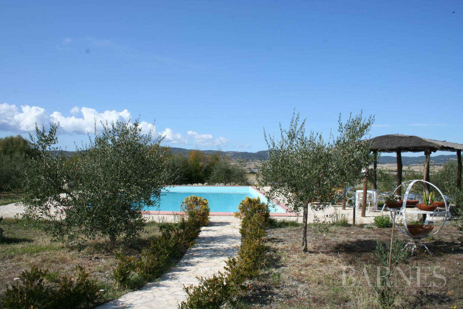 Santa Luce  - Villa 5 Bedrooms - picture 6