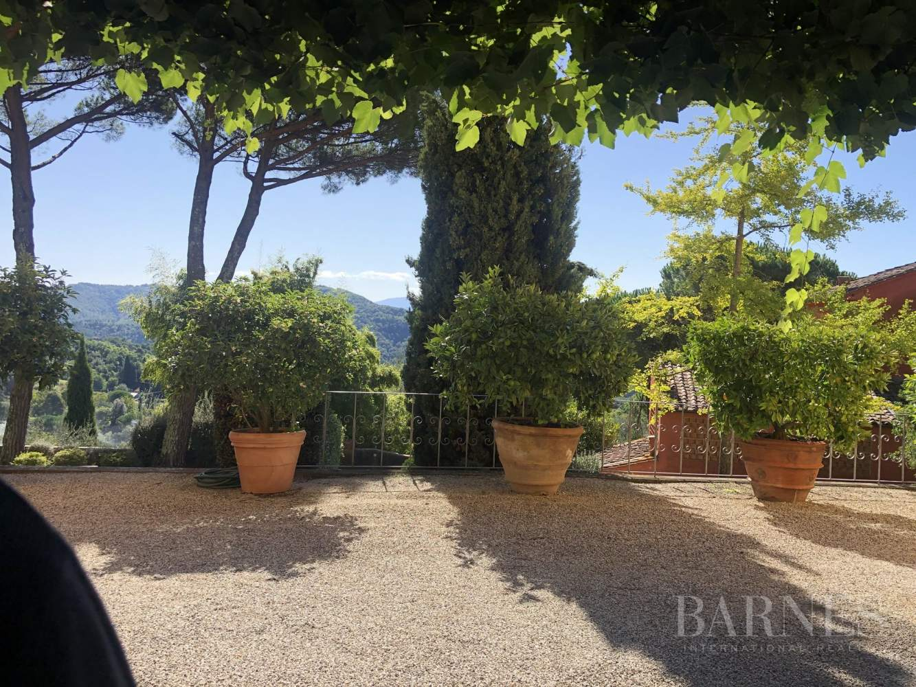 Camaiore  - Manor house 10 Bedrooms - picture 16