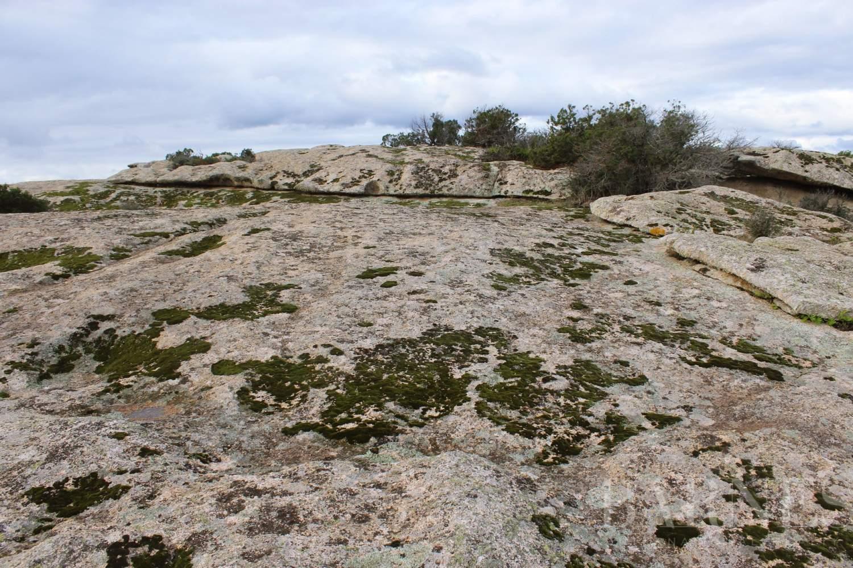 Arzachena  - Terrain constructible 5 Pièces - picture 5