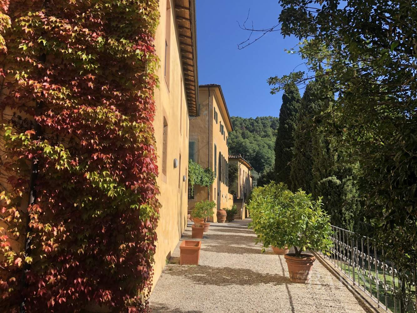 Camaiore  - Manor house 10 Bedrooms - picture 4