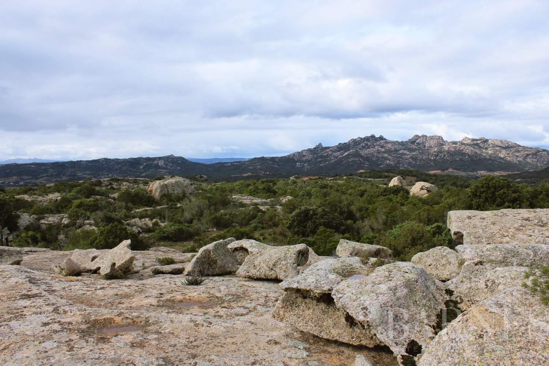 Arzachena  - Terrain constructible 5 Pièces - picture 8