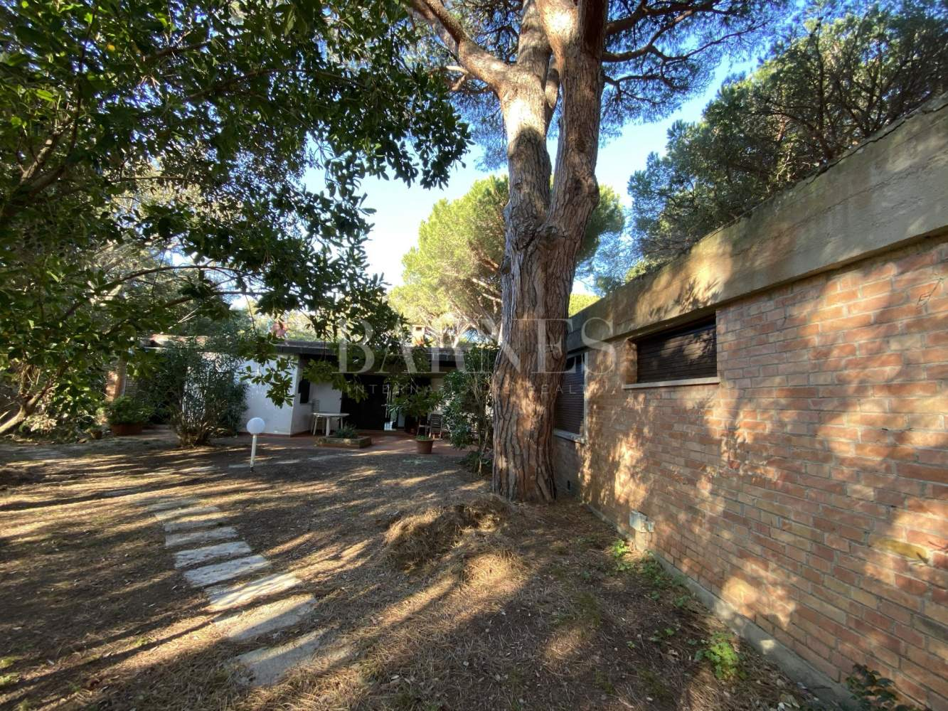 Castiglione della Pescaia  - Detached house 5 Bedrooms - picture 3