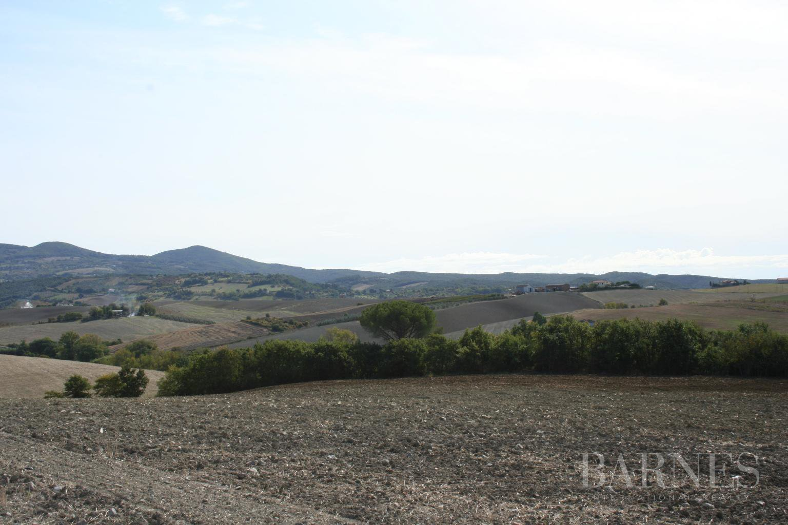 Santa Luce  - Villa 5 Bedrooms - picture 13