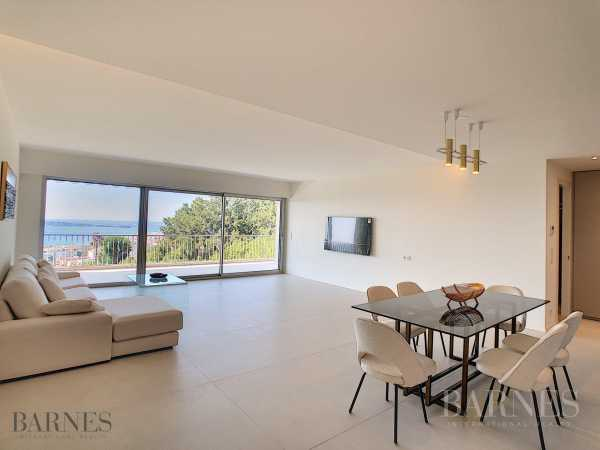 Apartment Cannes  -  ref 2632381 (picture 3)
