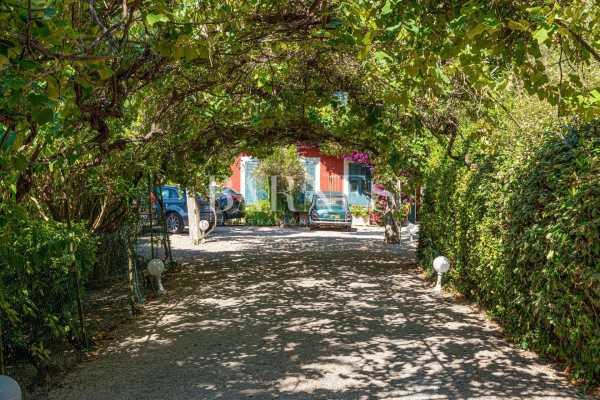 Villa Cannes  -  ref 2513701 (picture 3)