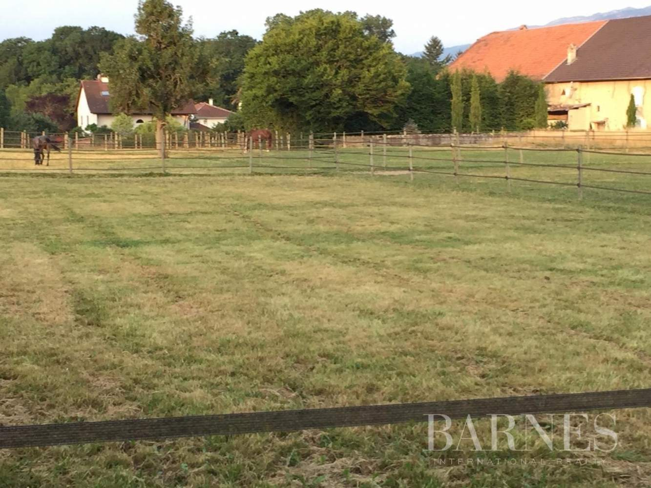 Exceptional property 15 minutes from Geneva picture 7