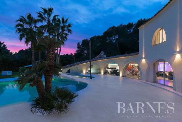 House Mougins  -  ref 2216561 (picture 3)