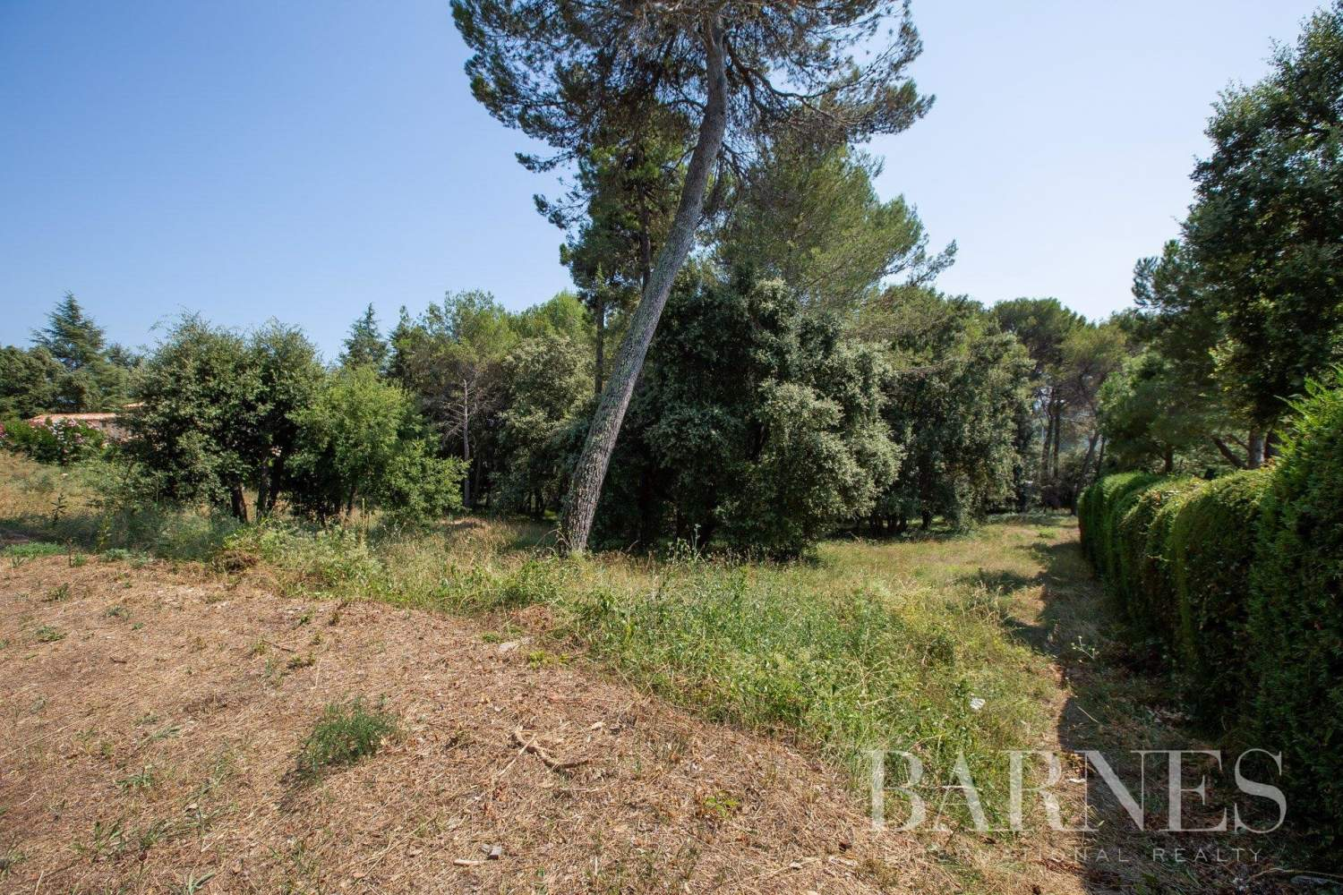 Biot  - Plot of land  - picture 4