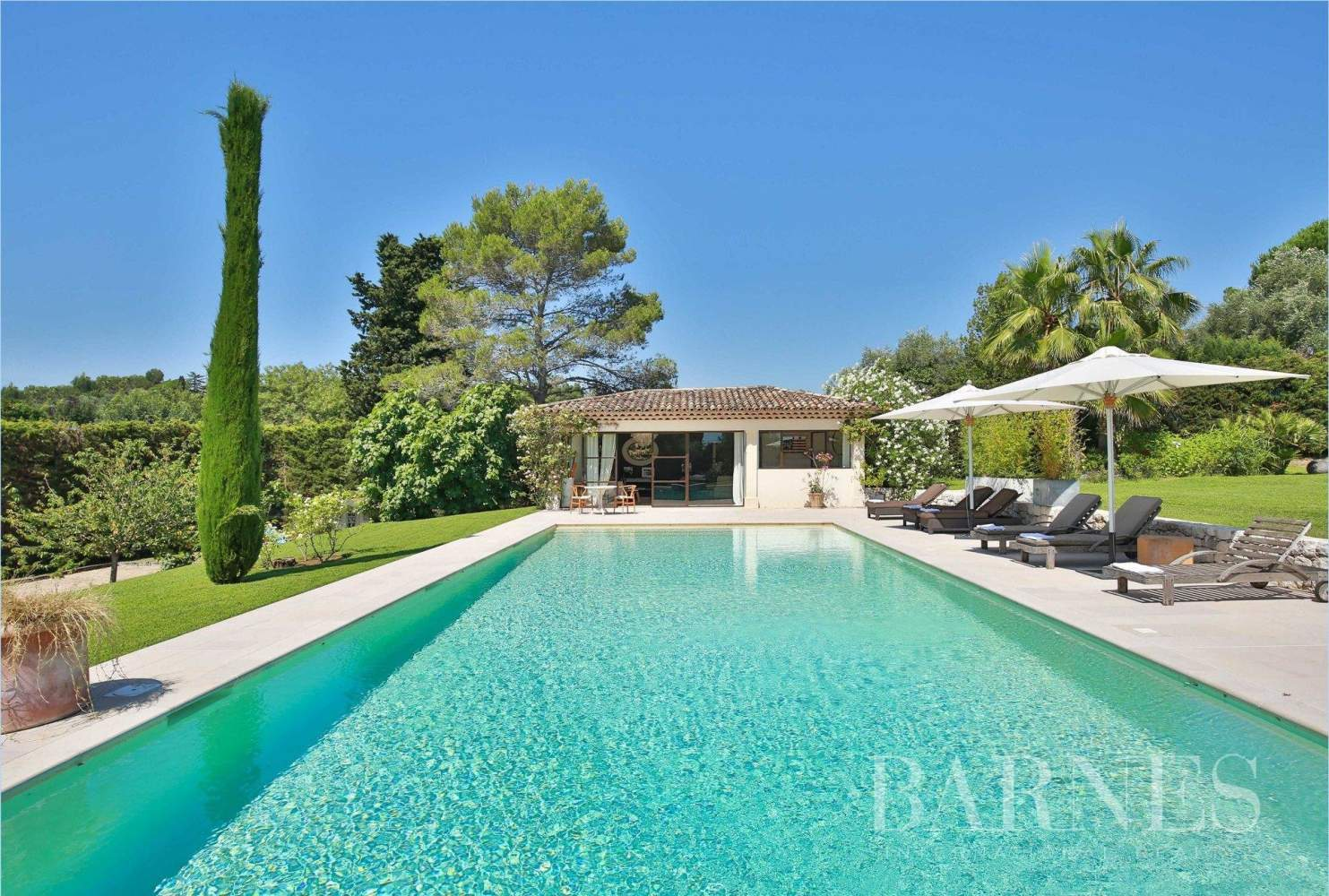Valbonne  - Property 8 Bedrooms - picture 2