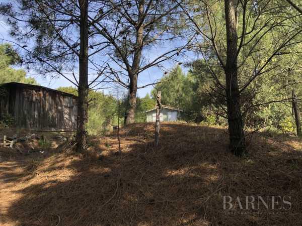 Building land Cap-Ferret  -  ref 3133624 (picture 2)