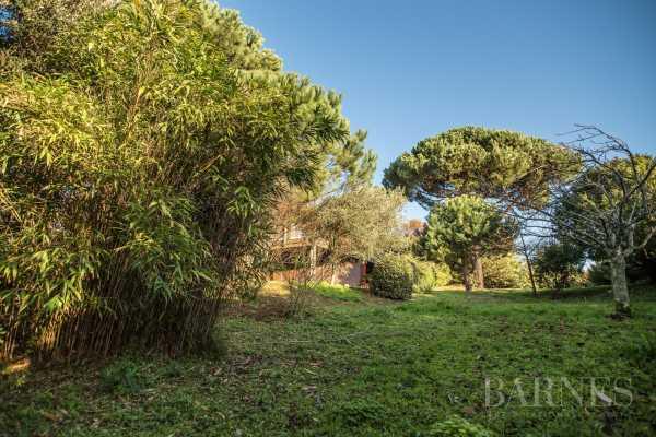 Villa Arcachon  -  ref 3479267 (picture 3)