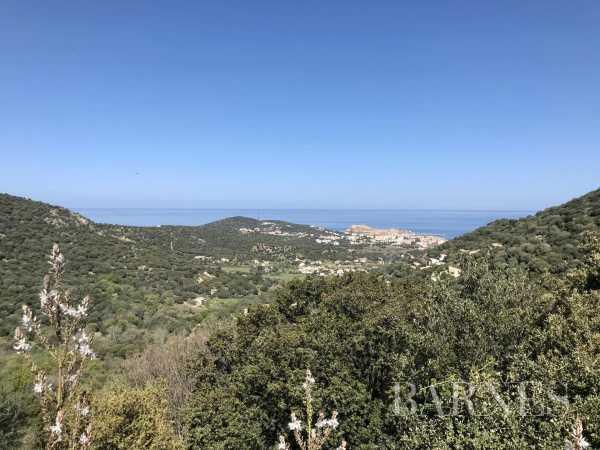 Terrain constructible L'Île-Rousse  -  ref 5460558 (picture 1)
