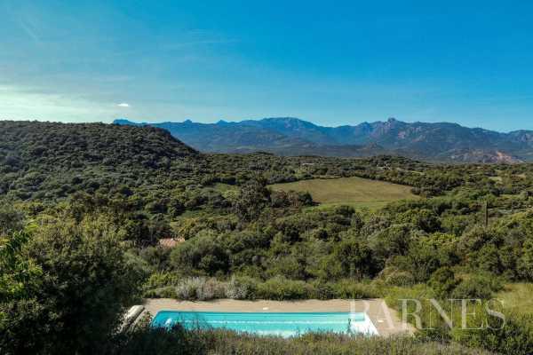 Villa Figari  -  ref 5278406 (picture 1)