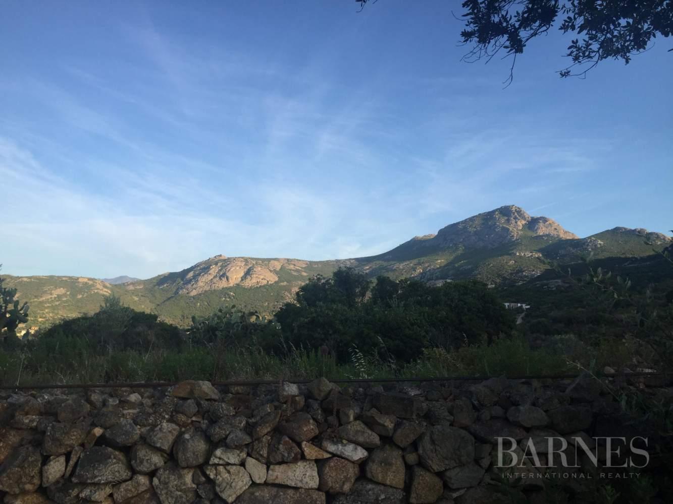 Calvi  - Villa 8 Cuartos 5 Habitaciones - picture 5