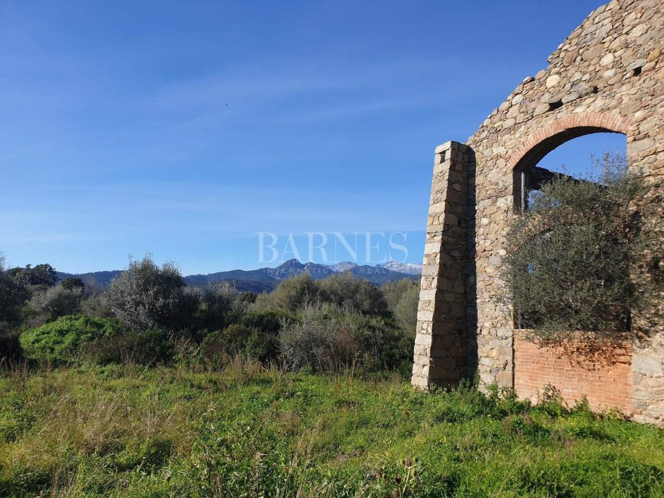 Ventiseri  - Terrain  - picture 4
