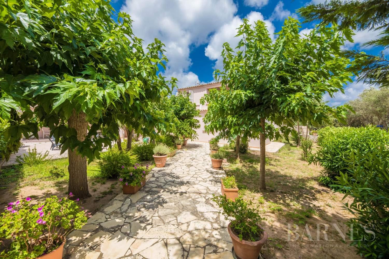 Bonifacio  - Maison d'hôtes 14 Pièces - picture 5