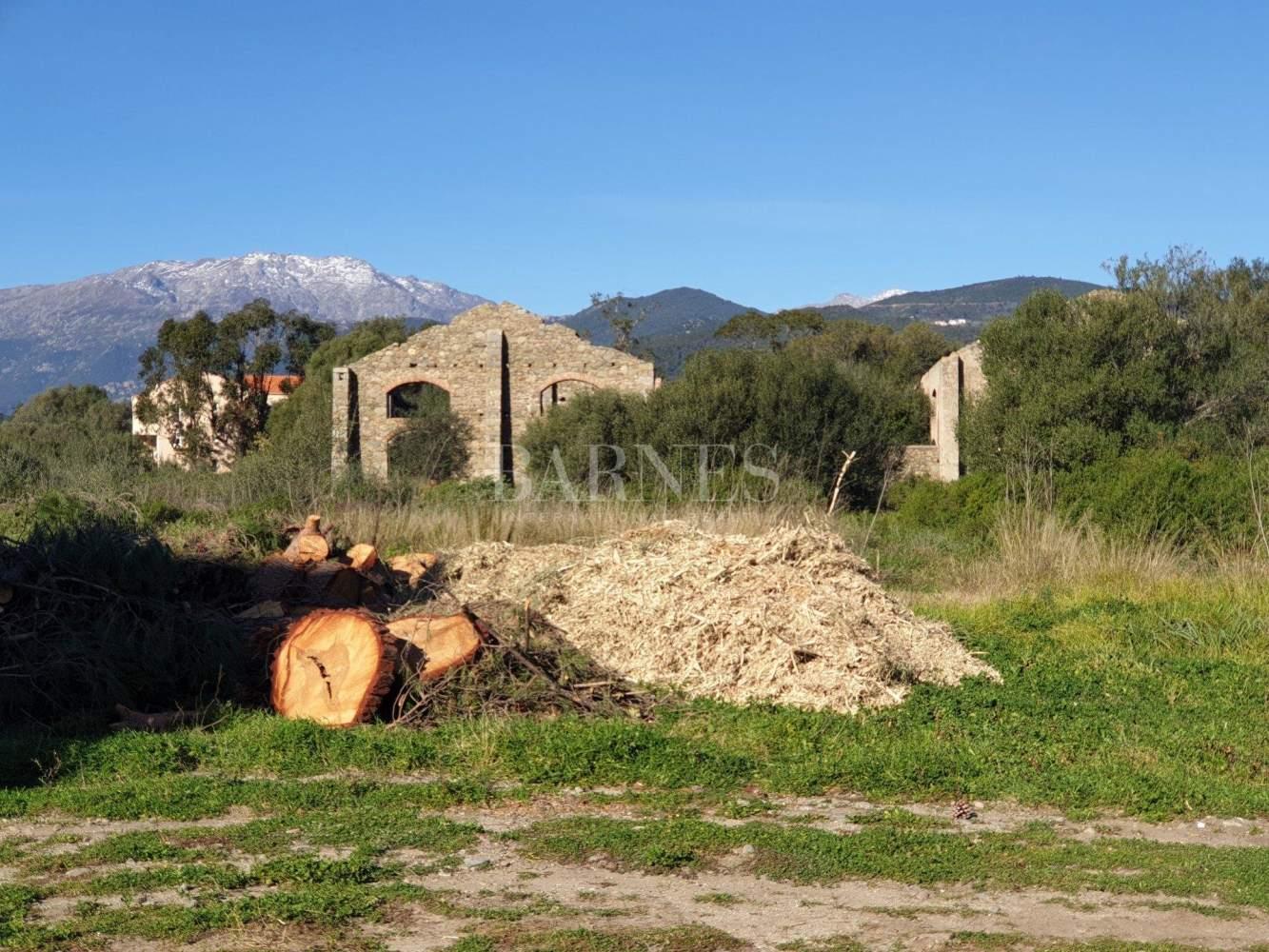 Ventiseri  - Terrain  - picture 6