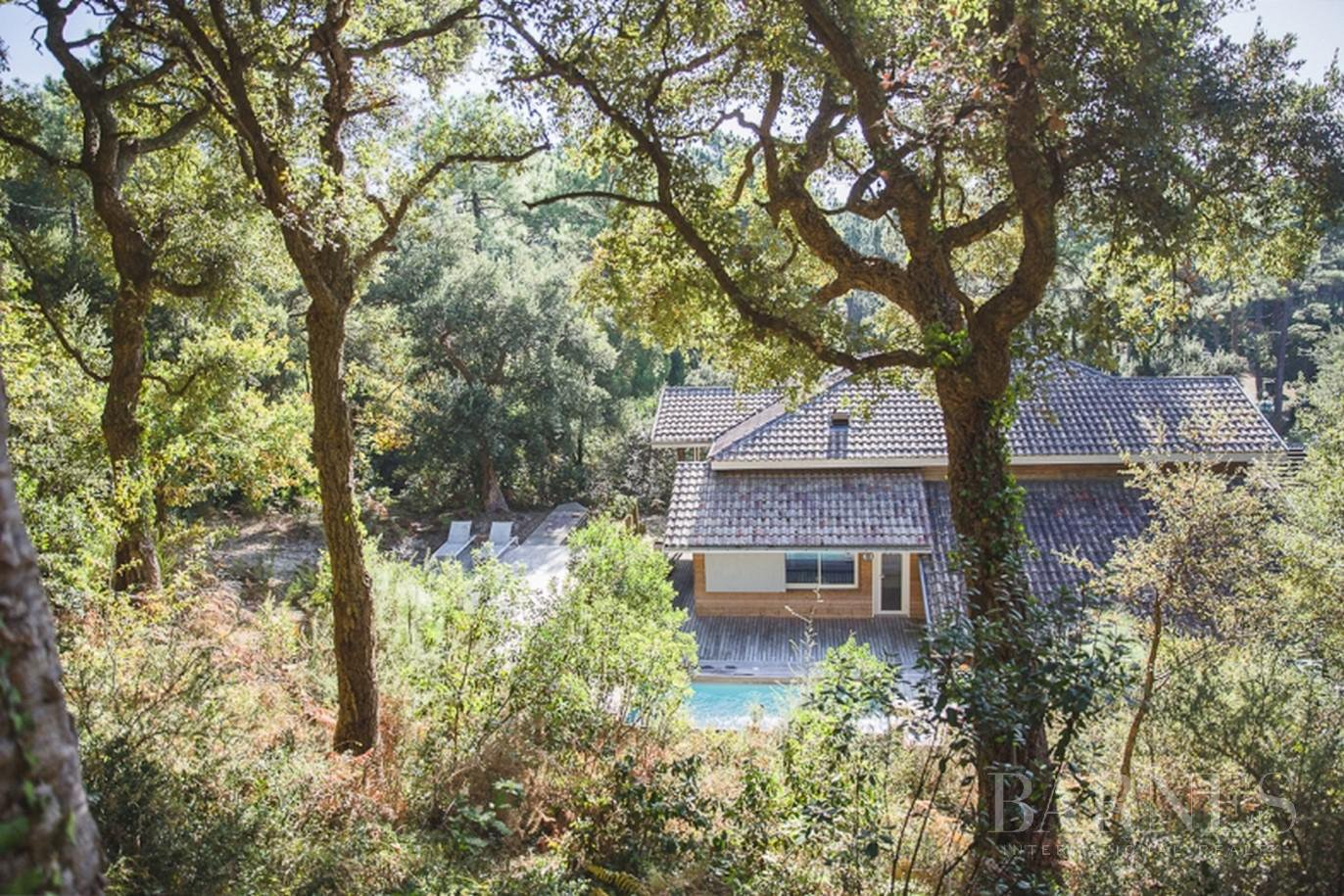 SEIGNOSSE GOLF COURSE, CHARMING WOODEN HOUSE WITH POOL, 6 BEDROOMS picture 1