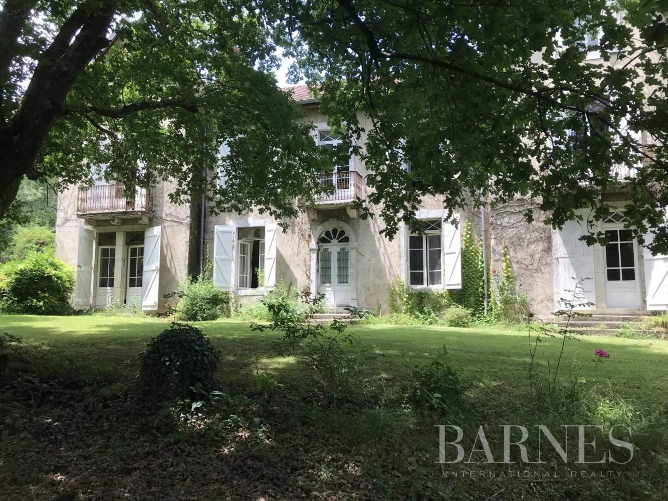 Salies-de-Béarn  - Propriété 13 Pièces 8 Chambres - picture 2