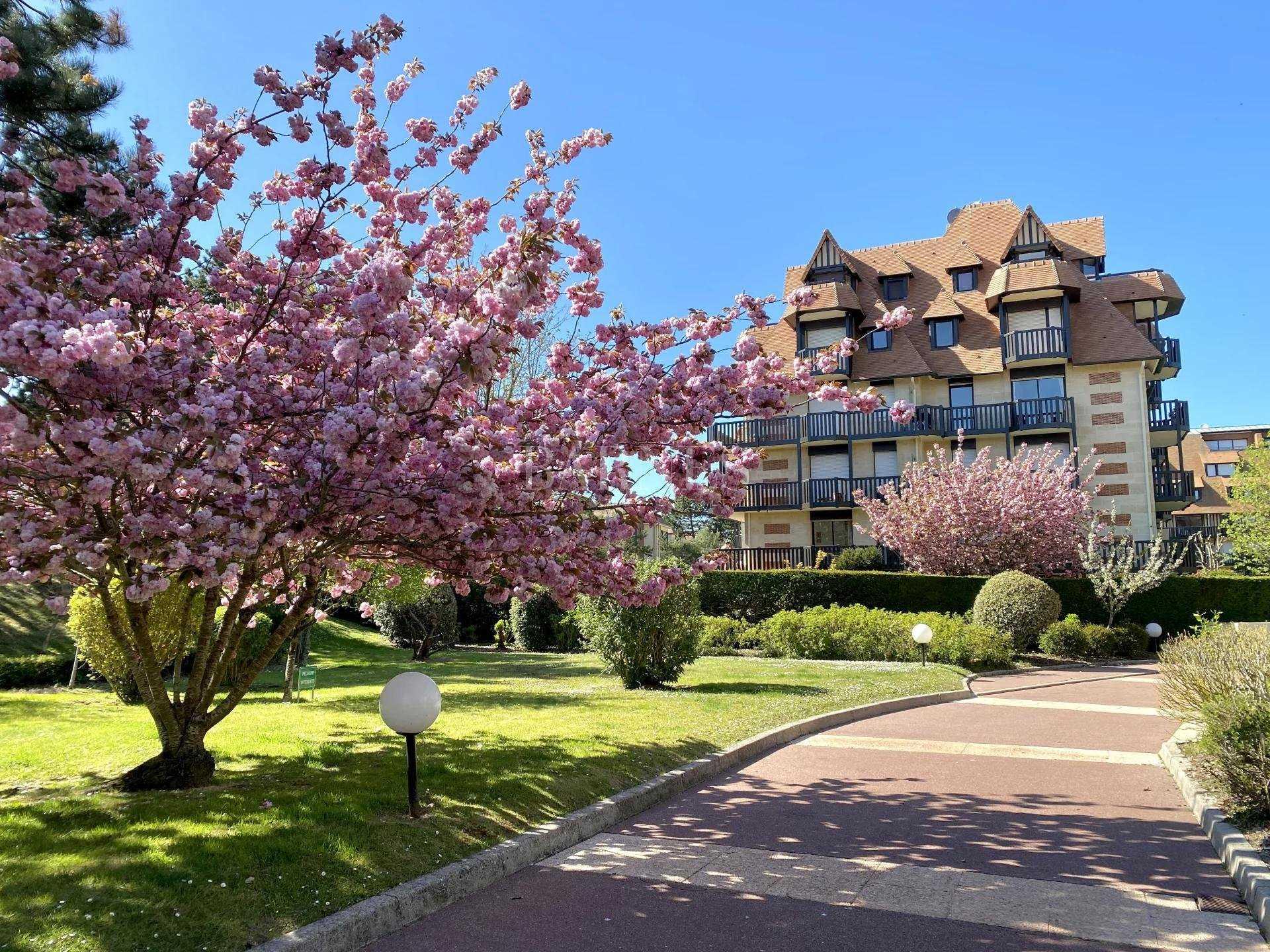 Appartement Deauville