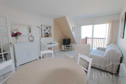 Apartment Benerville-sur-Mer  -  ref 2575104 (picture 3)