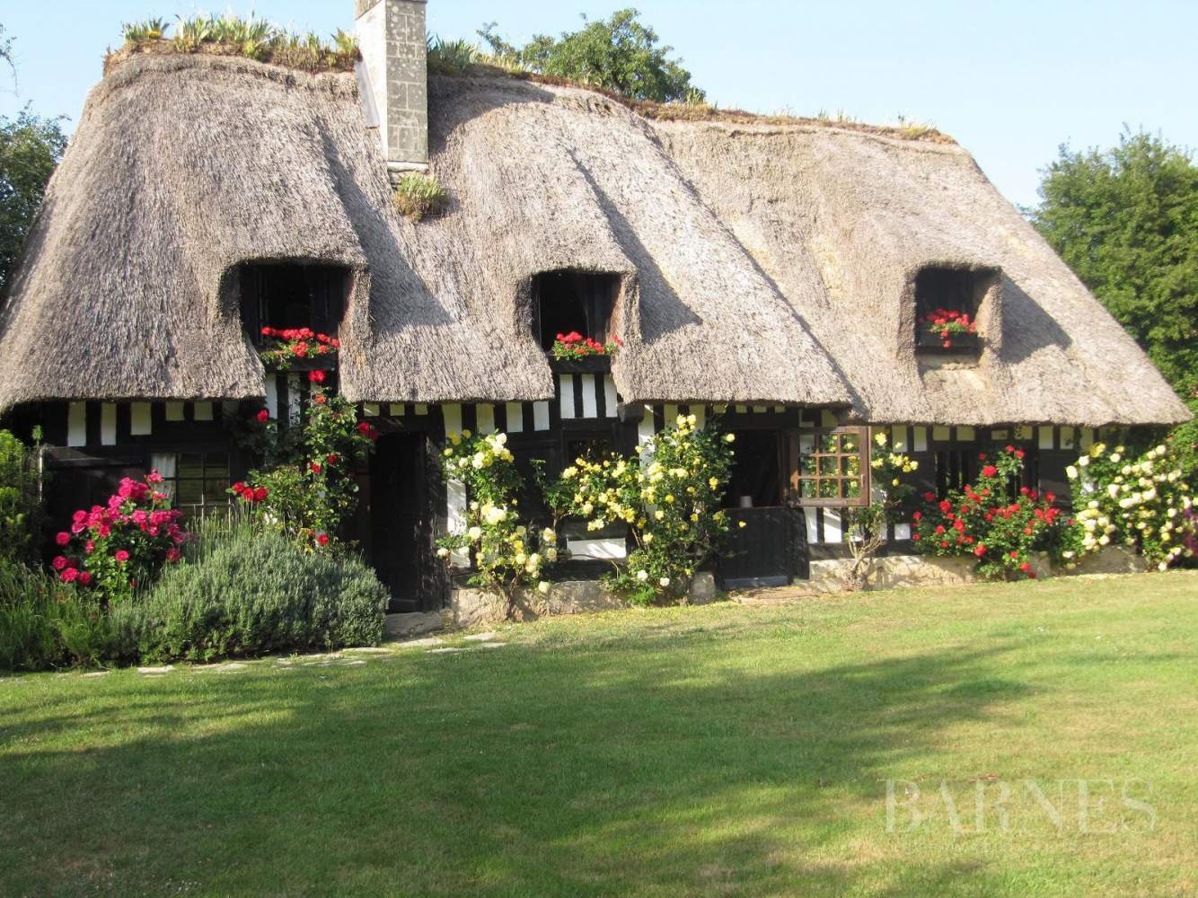 Lovely 18th century thatched cottage with pool and landscaped park picture 1
