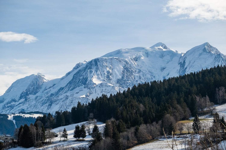 Appartement T3 face au Mont-Blanc picture 7