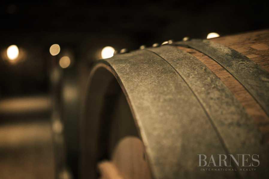 Bordeaux  - Propriété viticole 25 Pièces 6 Chambres