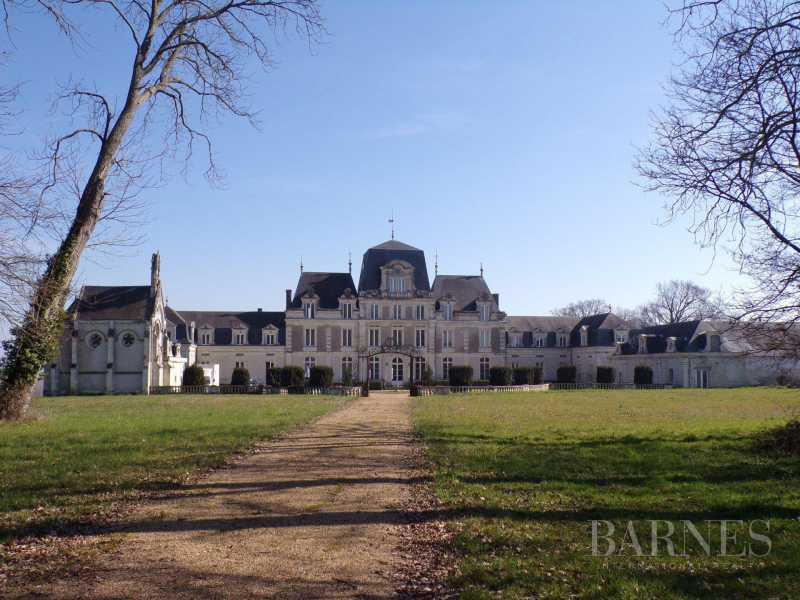 Angers  - Château 30 Pièces